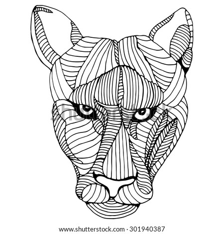 Mountain lion head illustration