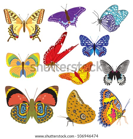 Multicolored butterflies set - vector illustration