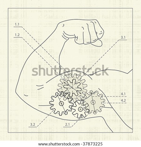 Muscle gear, detailed drawing, draft.. - stock vector