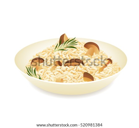 Mushroom risotto isolated on white background