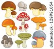 Mushroom theme collection 1 - vector illustration. - stock vector