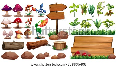 Mushrooms and different kinds of plants - stock vector