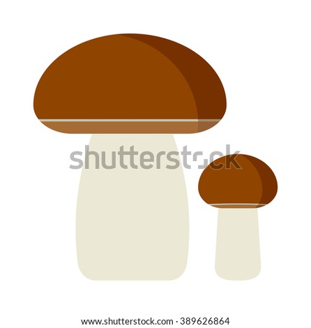 Mushrooms Illustration on white background. Flat mushrooms vector illustrations. Isolated mushroom symbol. Organic nature mushrooms. - stock vector