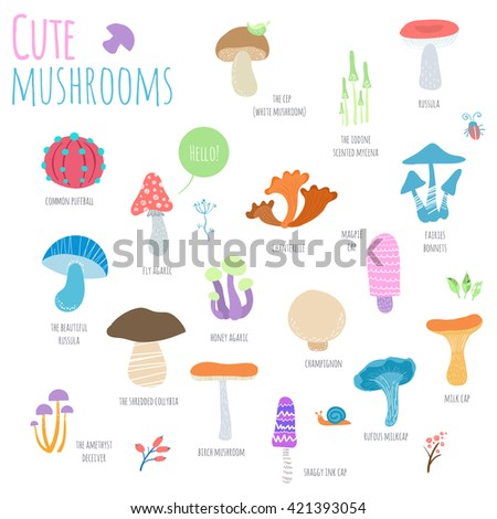 Mushrooms set isolated on white background. Cute cartoon mushrooms with signature. Hand-drawn vector illustration - stock vector