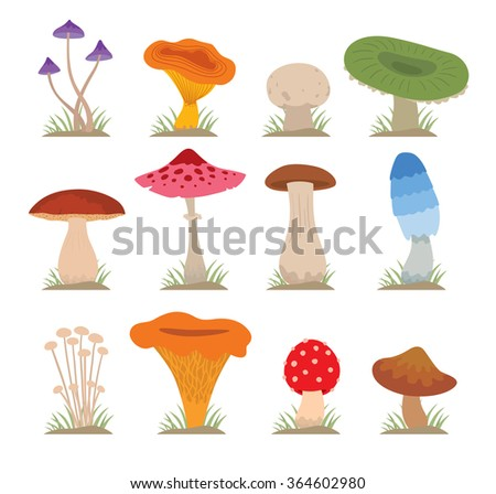 Mushrooms vector illustration set. Different types of mushrooms isolated on white background. Nature mushrooms for cook food and poisonous mushrooms flat style - stock vector