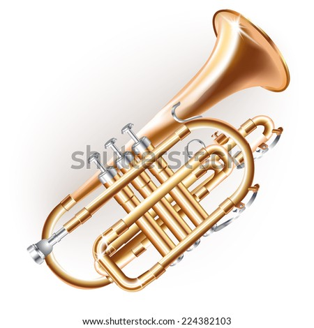 Musical background series. Classical cornet �  piston, isolated on white background . Vector illustration