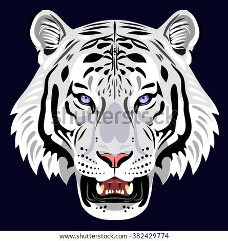Muzzle of a white tiger - stock vector