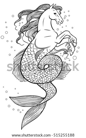 Hippocampus Stock Photos Royalty Free Images Amp Vectors