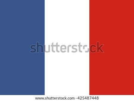 National France flag. Euro 2016. Flat style object.  - stock vector