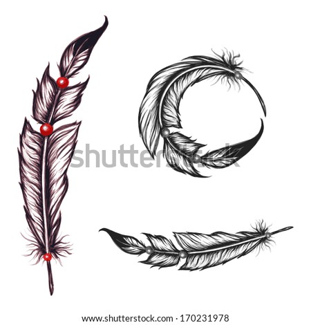 native american feathers set  - stock vector