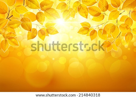 Natural background with leaves and bright sunlight. Vector illustration EPS10, transparency - stock vector