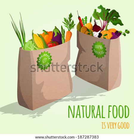 Natural  food is very good organic vegetables in paper bag concept vector illustration