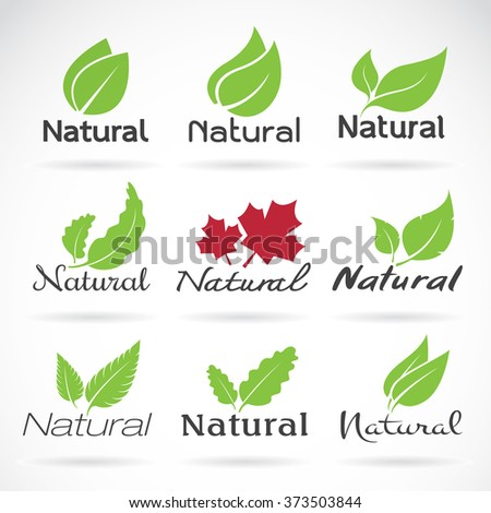 Natural logo design vector template on white background. Leaf icon, Vector leaves for your design - stock vector