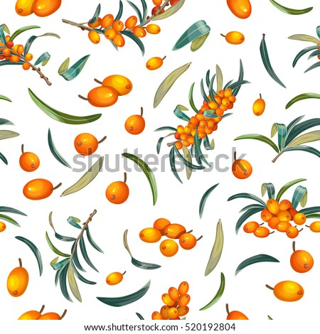 Natural organic sea buckthorn seamless pattern vector illustration