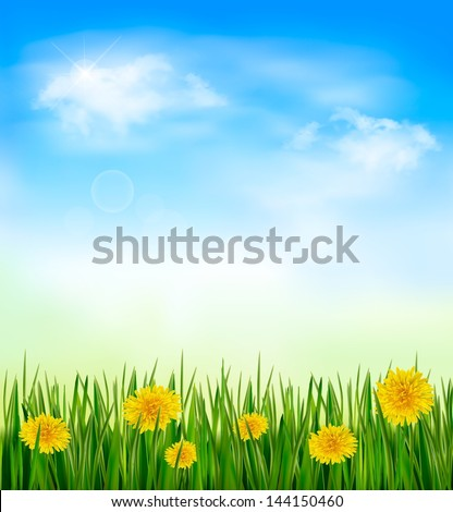 Nature background with green grass and flowers and blue sky. Vector - stock vector
