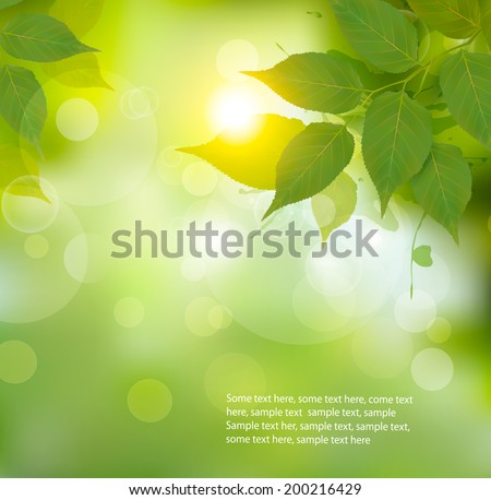 Spring sunlight with green leaves vector background 01 - Vector ...