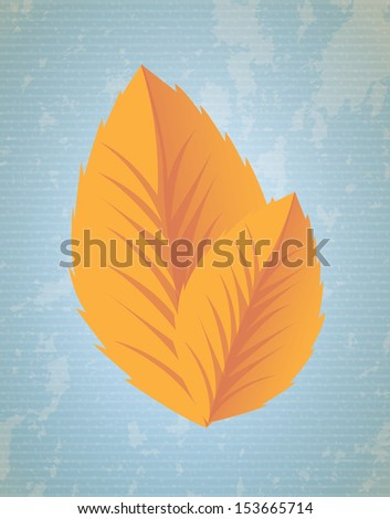 nature design over lineal background vector illustration