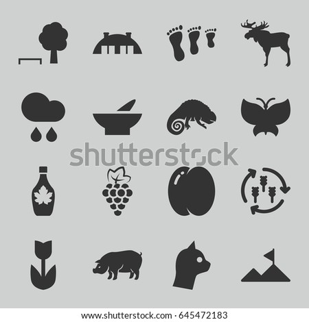 Nature icons set. set of 16 nature filled icons such as harvest, peach, grape, moose, pig, chameleon, bowl, maple syrup, barn, rain, mountain, butterfly, flower