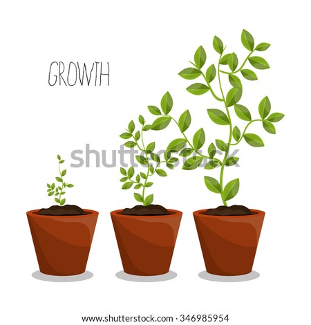 Nature plants growth graphic design, vector illustration eps10 - stock vector