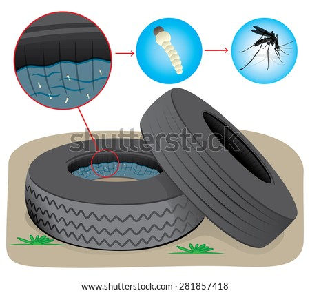 Nature, tires with stagnant water with fly breeding mosquitoes. Ideal for informational and institutional sanitation and related care - stock vector