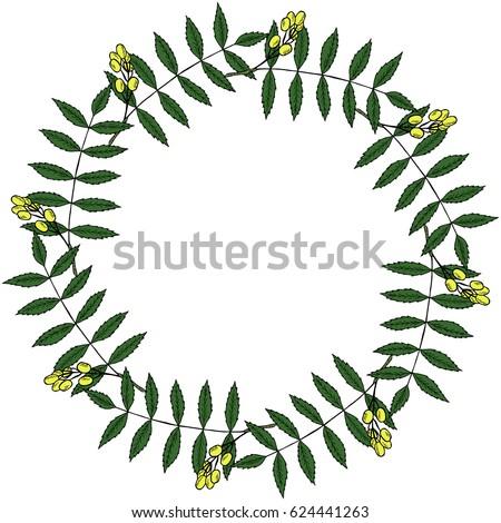 neem nimtree medicinal plant frame border stock vector royalty free rh shutterstock com Herbs and Spices Clip Art Herbs and Spices Clip Art