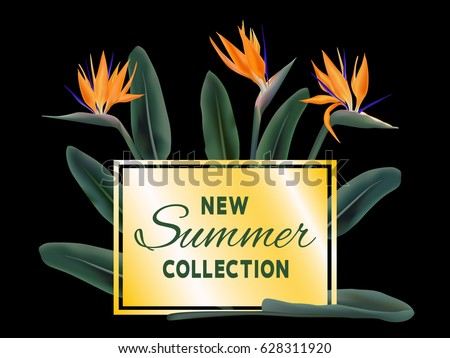 New Summer Collection sale vector poster. Text on golden fame and strelitzia reginae exotic jungle leaves and flowers illustration. Exotic tropical plant - bird of paradise on black. Stylish banner.