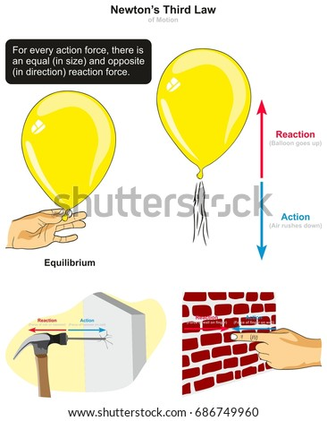 Third Law Motion Infographic Diagram Examples Stock Vector 686749960