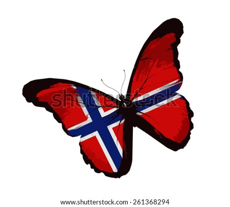 Norwegian flag butterfly, isolated on white - stock vector