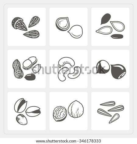 Nut icons set