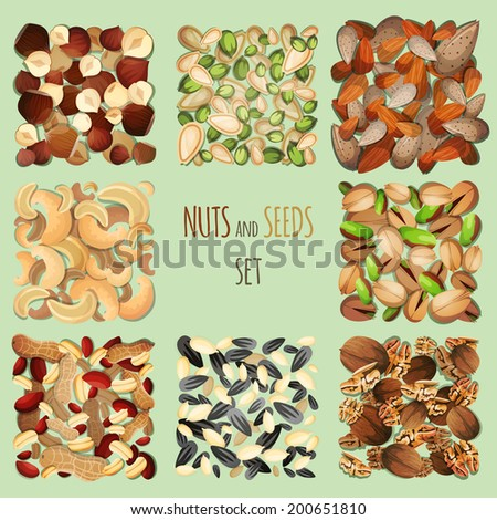 Nuts and seeds mix decorative elements set vector illustration