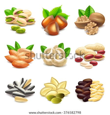 Nuts icons detailed photo realistic vector set