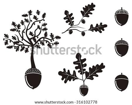 oak acorn silhouettes set - stock vector