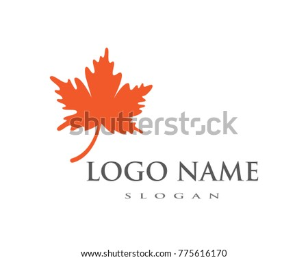 oak leaf icon vector design template stock vector 775616170