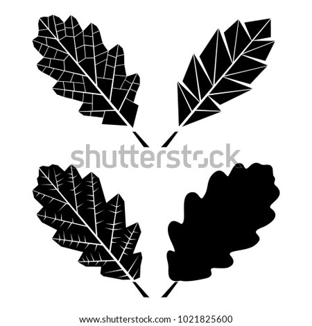 Oak Leaf Stock Images, Royalty-Free Images & Vectors ...