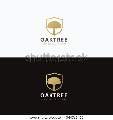 Oak tree logo,Vector logo template - stock vector