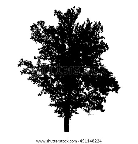 Oak tree with leaves, black silhouette on white background. Vector icon.