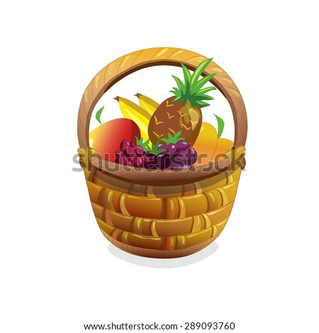 object. fruit basket. vector