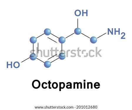 Octopamine molecule, vector illustration. - stock vector