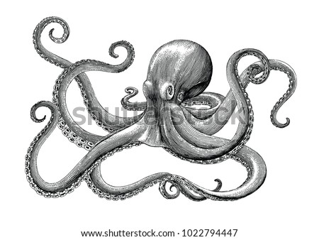 Octopus Stock Images, Royalty-Free Images & Vectors ...