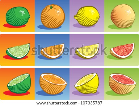 Old fashioned etched style illustration of various citrus fruit, depicted whole, sliced into a wedge, and sliced in half.