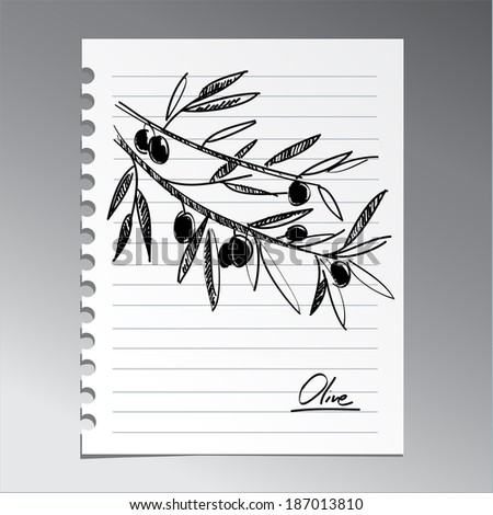 olive branch on the notebook sheet - stock vector
