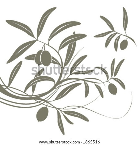 Olive branch. Vector floral background. - stock vector