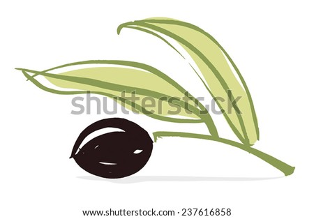Olive branch with olive leaves and Black ripe olive. Hand drawn with brush & ink, vector illustration, fully adjustable & scalable. - stock vector