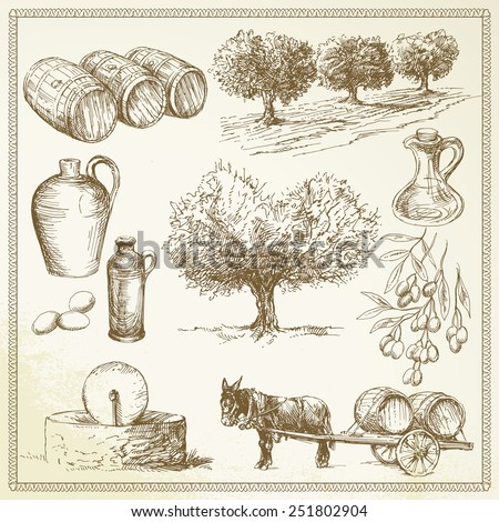 olive - hand drawn set - stock vector