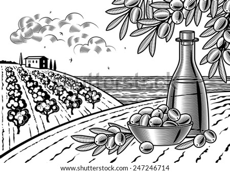 Olive harvest landscape black and white. Fully editable vector illustration with clipping mask.