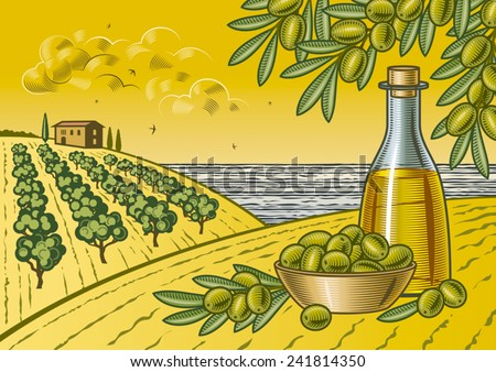 Olive harvest landscape. Fully editable vector illustration with clipping mask. - stock vector
