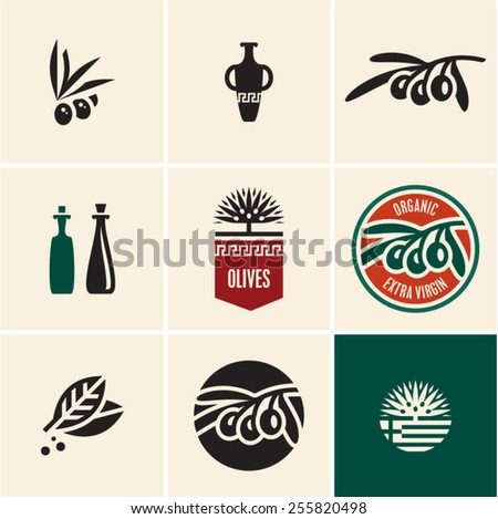 Olive oil. Olives. Olive tree. Olive branch vector icon. - stock vector