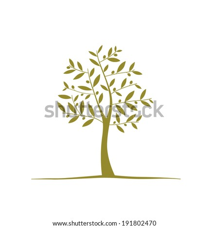 Olive tree isolated on white background. - stock vector