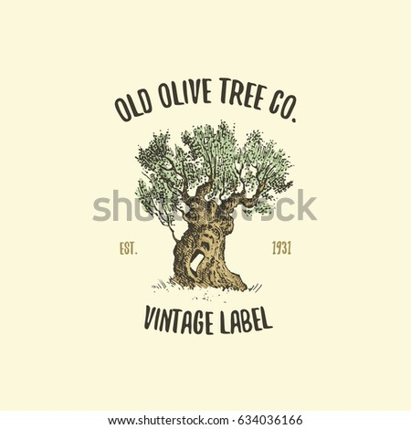 Olive Tree Logo Engraved Or Hand Drawn Isolated Old Looking Emblem For Ecology Camping