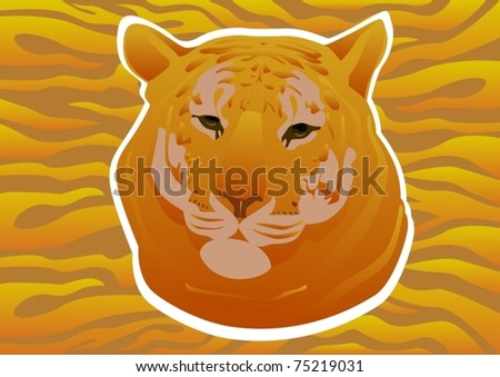 on background coloring skin tigers head stock vector 75219031